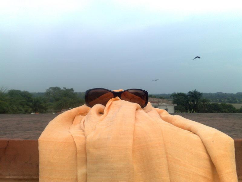 Mayapur_2009_17